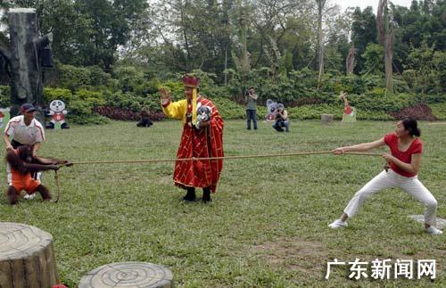 香江野生动物世界上演史无前例动物奥运会(图)