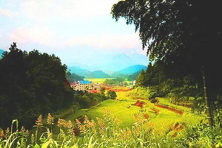 薄刀峰林场风景