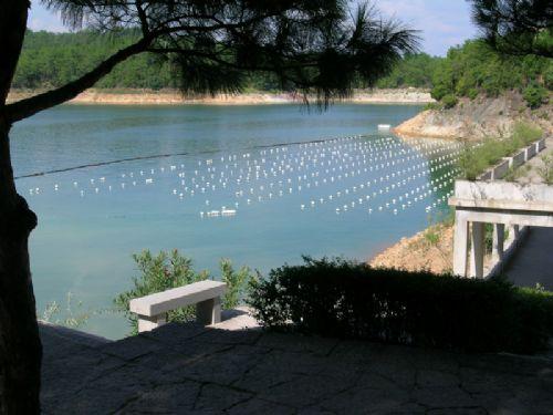 杭州千岛湖的旅游攻略