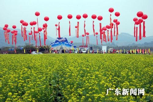 """广州 增城/增城菜心远近驰名,素有""""菜心之王""""、""""菜品之冠""""的美誉。"""