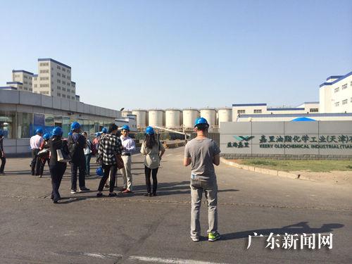 益海嘉里油脂化工_益海嘉里回应质疑:废弃油脂用来生产皂粒等化工产品--广东新闻网