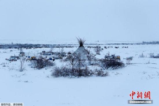 11月27日,极寒下的驯鹿人的居所。
