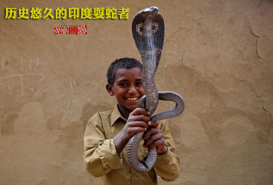"""耍蛇文化是印度历史悠久的文化之一。在印度,蛇类在文化中扮演重要的角色。印度人崇拜蛇,视蛇为""""神""""的化身,而眼镜蛇尤受崇敬,被称""""善蛇""""。耍蛇者被认为是印度教三大主神之一的湿婆神的追随者。如果有人被蛇咬伤,耍蛇者常常会成为""""医生""""。摄影师Adnan Abidi探访耍蛇者聚居的印度北方邦Baghpur村庄Jogi Dera地区,记录了耍蛇者和家人的生活场景。"""