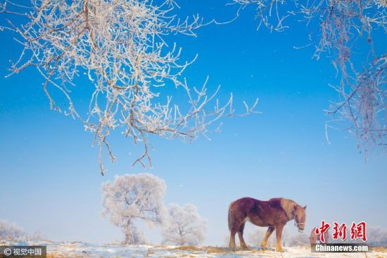 2017年3月6日,吉林市龙潭区雾凇岛景区再现早春雾凇。当日,吉林市松花江畔雾凇岛景区出现早春雾凇,难得一见。据统计,自2016年12月中旬至2017年2月末,雾凇岛景区旅游人数达41.9万。 夏天 摄 图片来源:视觉中国
