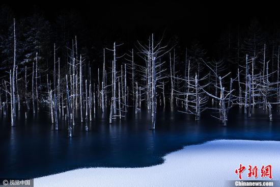 """日本摄影师Hiroshi Tanita作品《边界》获得2017索尼世界摄影大赛公开组""""自然类""""大奖。图片来源:CFP视觉中国"""