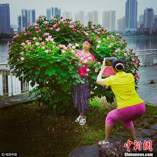 王戈作品《留影》获得2017索尼世界摄影大赛中国国家专项奖二等奖。图片来源:CFP视觉中国