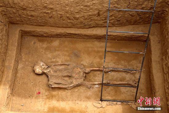 4月20日,河南郑州西郊以在建工地,发现东周古墓群,里边发掘出十多具尸骨姿态奇特。据郑州市文物考古研究院发掘项目负责人刘青彬介绍,目前已发现了古代墓葬30座,基本都是东周时期的墓葬,因为墓式的不同,有仰身直肢葬,有侧身屈肢葬,在棺椁倒塌之后,他的头部可能会受到挤压变形导致他的嘴巴张开。目前发掘工作还在进行中。 王中举 摄