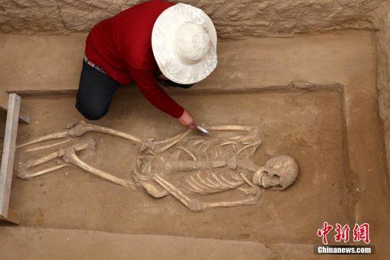工作人员正在对尸骨进行测量。 王中举 摄
