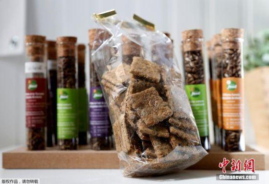 6月12日消息,比利时布鲁塞尔的一家小食品公司开发了一种新型饼干,这种饼干由蟋蟀制成。该公司在自己所有的农场里定期培育蟋蟀,为饼干提供所需的原料来源。