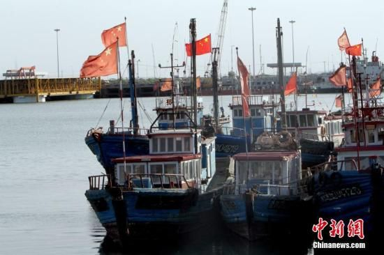 资料图 停泊的渔船。 中新社记者 张道正 摄