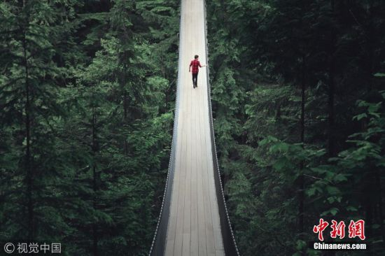 2017年10月18日消息,对于寻求刺激的游客来说,去温哥华旅游只要到卡皮拉诺吊桥上走一走,绝对会肾上腺激素飙升。这座桥始建于1899年,全长约137米,距离桥底下的嘉碧兰奴河约有230米高。图片来源:视觉中国