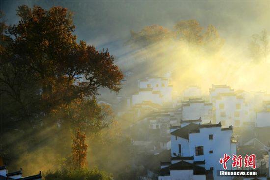 """11月27日,素有""""中国最美乡村""""美誉的江西省婺源县大鄣山乡程村,粉墙黛瓦的徽派民居在晨雾中若隐若现,与古红枫林交相辉映,一派世外桃源胜景,美不胜收。 程新德 摄"""