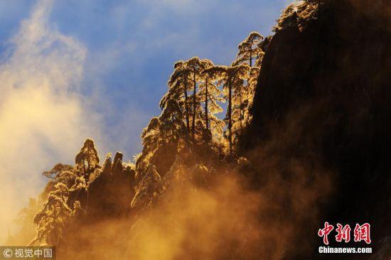 1月5日清晨,安徽黄山。旭日东升,云海翻滚,佛光闪现,黄山如同翻开了一幅精美绝伦的画卷,登顶观览堪比人间仙境。方立华 摄 图片来源:视觉中国