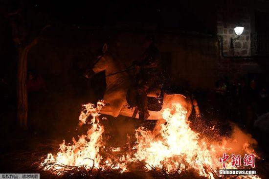 当地时间1月16日,西班牙San Bartolome De Pinares小镇,人们骑着马穿越火海,这都是为了纪念圣安东尼节。人们会在节日的前一天晚上就开始举行骑马活动。这个西班牙传统节日已有几百年历史,旨在纪念动物保护神圣安东尼,同时也有在新的一年净化和保护动物的意义。