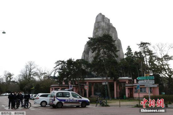 """当地时间2018年1月26日,位于巴黎的法国国家自然历史博物馆里的动物园出现""""惊险""""一幕,近50只狒狒意外逃脱圈养区,园内游客被紧急疏散,动物园当天全天闭馆。图为警察在动物园内驻守,以防止意外发生。"""