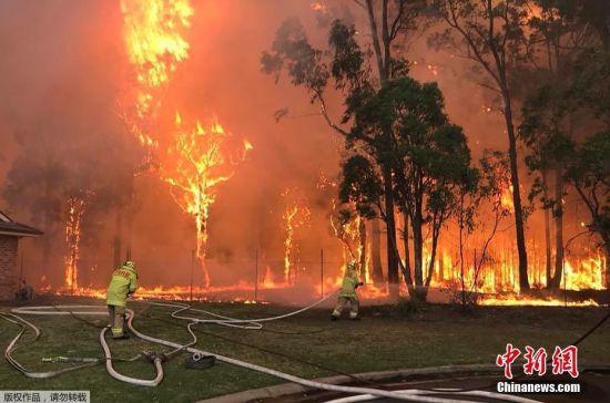 据澳大利亚新南威尔士州乡村消防服务局消息,当地时间4月14日,悉尼西南部霍尔斯沃思地区(HOLSWORTH)及摩尔班克发生山火,火势波及霍尔斯沃思军营及其附近医院。截至目前,火情依在蔓延,已有100多名消防员参与扑救。