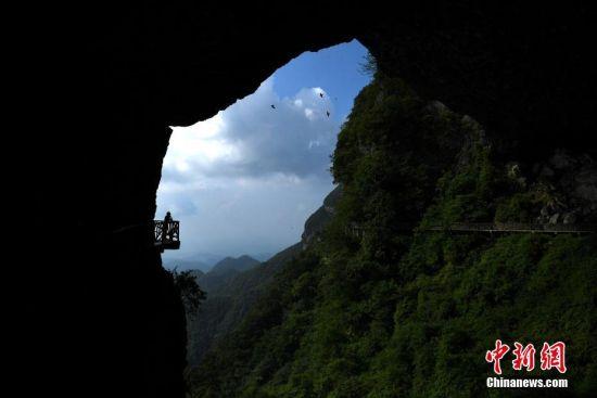 """6月29日,金佛山高空绝壁栈道吸引不少游客前来体验""""步步惊心""""的感觉。据悉,重庆南川金佛山上的高空绝壁栈道全长有3.5公里,其中有1.5公里几乎是在垂直90度的崖壁上建成,最高悬空有近100米高。陈超 摄"""