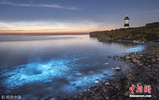 7月6日讯(具体拍摄时间不详),英国威尔士,数以百万计的罕见发光浮游生物聚集在海滩边,点亮了寂静的夜晚。业余摄影师Paul Joinson抓拍到了爱尔兰海域这一罕见的奇妙瞬间。生物发光现象属于化学发光,当遇到荧光素酶和氧时化学能转变为光能的效率几乎为100%。图片来源:视觉中国
