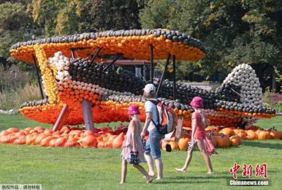 当地时间9月5日,德国埃尔福特举办秋收园艺展,园丁用数千颗南瓜打造UFO、蝴蝶、飞机和白头海雕等各种雕塑,栩栩如生十分惊艳。
