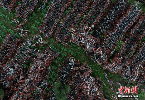 3月7日,四川乐山,农田里堆放整齐的共享单车。当日,四川乐山一农田里堆放的上千辆共享单车将陆续被运走,转运至其他地方继续堆放,这些共享单车已占用农田堆放了一个多月。中新社记者 刘忠俊 摄