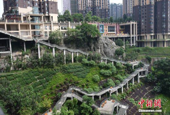 重庆一小区与半坡栈道相连,市民回家先爬山。周毅 摄