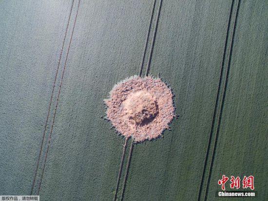"""当地时间6月23日晚,德国黑森州Ahlbach居民被一声巨响惊醒,专家经过调查称""""几乎可以肯定""""是一枚重达250公斤、装有化学雷管的二战时期炸弹在当地田野爆炸。警方发言人称爆炸造成的洞约有4英尺(约合1.22米)深,直径约10米。图为24日拍摄的炸弹炸出的大坑。"""