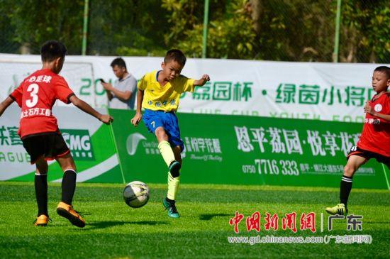 小球员在绿茵场上角逐。主办方供图