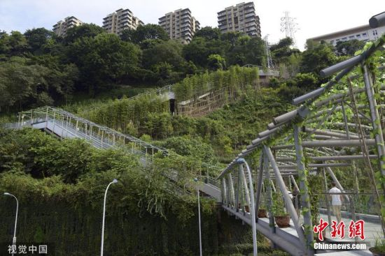 """2019年7月31日,重庆,市民从新建成的首条电动扶梯崖壁步道---大化步道经过。本月底,重庆首条电动扶梯崖壁步道正式迎客。据了解,大化步道是一条依山而建的崖壁步道,上起于大坪九坑子经纬大道,下出于化龙桥的瑞天路。由于它的上下落差较大,从方便沿线居民上下,步道设置了14台电动扶梯,上行下行各7台。记者实地观察,大化步道设计不仅贴心便民,它还是风景优美""""颜值""""较高的新景观打卡地。据悉,这条步道沿线景观绿化超过1万平方米,是市民又一个集登山、散步、休闲的好去处。 图片来源:视觉中国"""