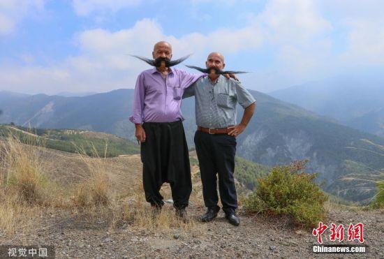 当地时间8月12日,土耳其哈塔伊,堂兄弟Mehmet Kurtulan和Huseyin Gunduz已有20年没剪胡子了,他们的胡子长80厘米。平日会用吹风机和发胶来塑造胡子塑形。图片来源:视觉中国