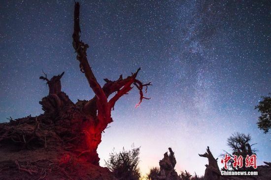 """哈密处在新疆最东部,每到夜晚繁星点点,美丽的银河横跨天际,轮廓分明。10月6日-8日来自全国各地的媒体以及专职摄影师记录下了哈密的夜空之美。8日,中宣部中国新闻文化促进会秘书长王汉民向伊吾胡杨林生态园景区负责人颁发了""""中国最美星空摄影基地""""牌匾,使得该景区成为新疆第一家获此荣誉的景区。赵忠 摄"""