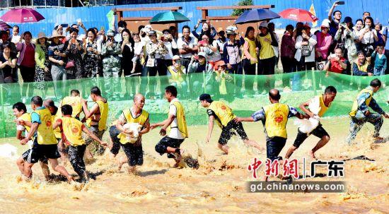 村民们在水塘抓鸭。钟欣摄影