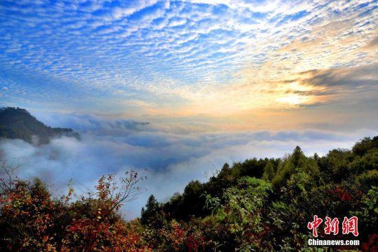 """10月28日,在安徽黄山市休宁拍摄的壮观""""鱼鳞云""""。中新社发 施广德 摄 图片来源:CNSPHOTO"""