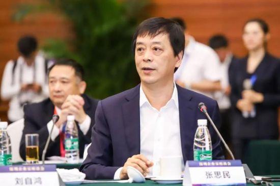 深圳海王集团董事长张思民