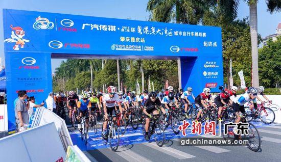 近千名骑手角逐环大湾区自行车赛德庆站赛事——中国新闻网·广东