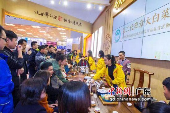 来自全国各地的茶友们在珠海茶博会上以茶会友。陆绍龙摄影