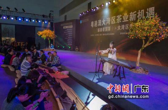 """茶博会还举行了""""媒眼看国茶·大湾区专场""""的媒体人茶会。陆绍龙摄影"""