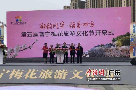 广东普宁第五届梅花旅游文化节开幕。李怡青摄影