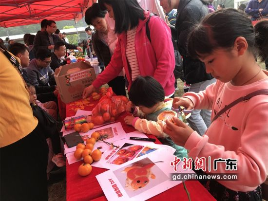 广东博罗举行首届柑桔文化节 吸