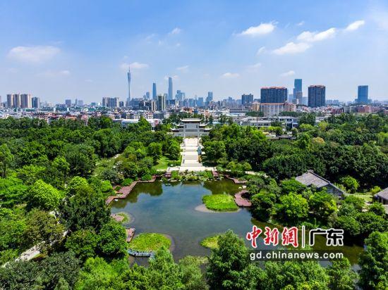 广州海珠国家湿地公园(资料图)。广东省林业局 供图