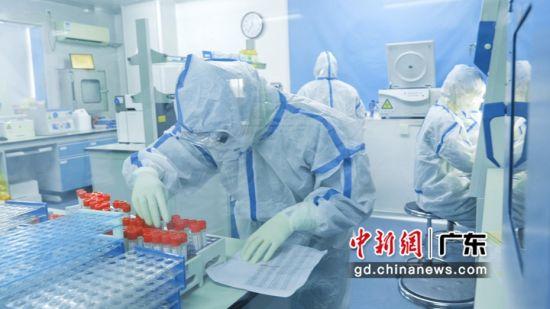 金域医学集团开展核酸检测已超过290万例,林捷提供