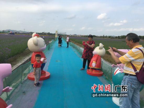 广东惠州仙眷花洲海纳花海引来疫情后的旅游高峰