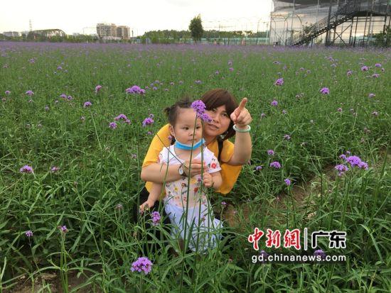 图为游客在广东惠州仙眷花洲海纳花海景区游玩并留下倩影 宋秀杰 摄