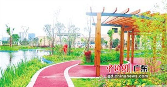 增城新塘镇永和污水处理二厂的人工湿地。增城区委宣传部 供图