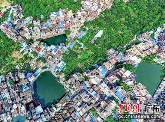 萝峰村航拍实景图 星河湾供图