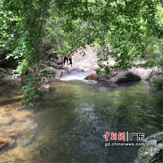 图为惠东县安墩镇水美村的景色。惠东县供图
