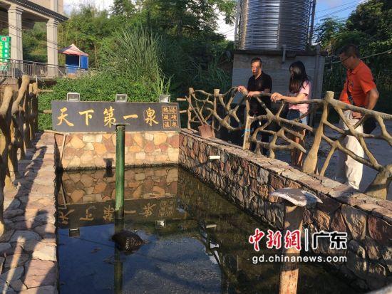 图为惠东县安墩镇汤热村的温泉眼,水温高达90度,当地村民常常在此烫鸡烫鸭。惠东县供图