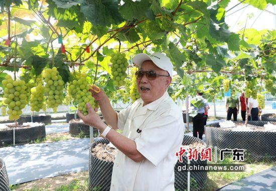 深圳市潮汕商会创会会长吴开松。受访者供图。