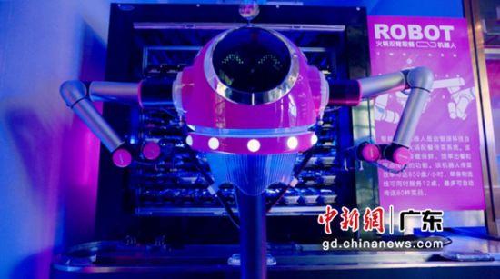 煲仔饭机器人。许青青摄影