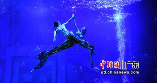 演员身着定制鱼尾服潜入水中,为观众带来唯美的水下之舞。(姬东摄影)