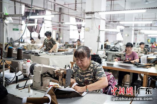 """从工厂厂长到""""数字一哥"""",方林敏:天猫上长出了一方""""林"""""""